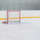 What Will I Do Without Hockey?